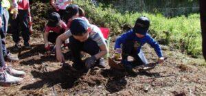 escavando